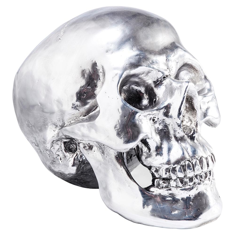 Skull figure chrome