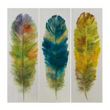 Multicolour feather handpainted artwork