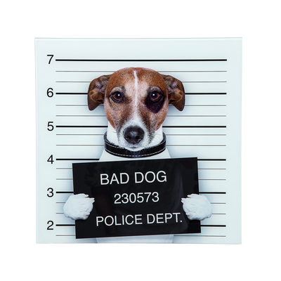 Bad Dog Glass Wall Art