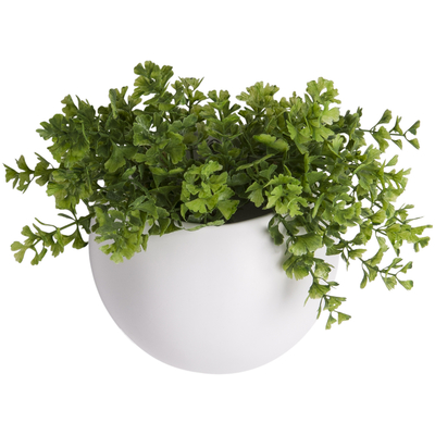 Murus wall planter small white