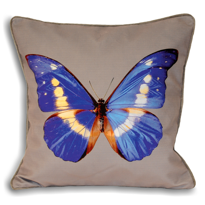 butterfly cushion purple dwell : 700 133591 from dwell.co.uk size 700 x 700 jpeg 448kB