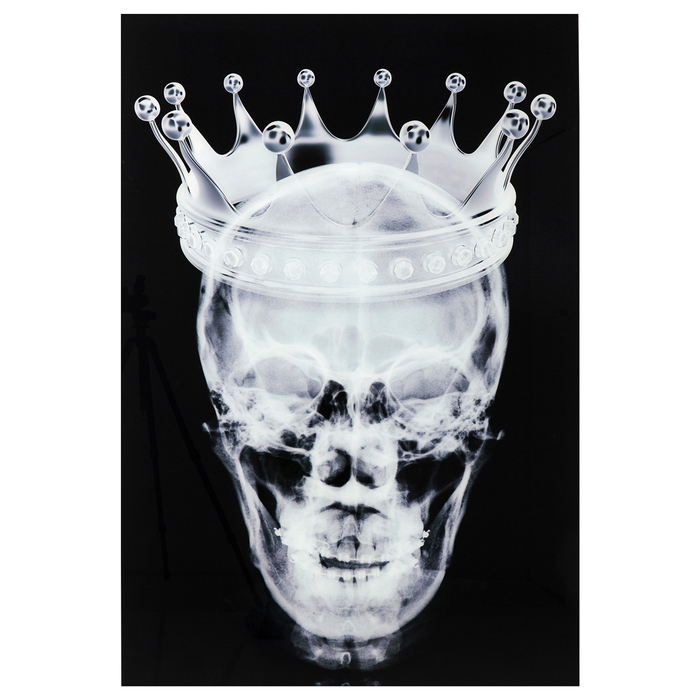 Skull crown glass art